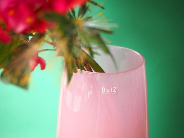 DoutZ8