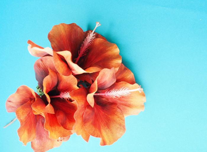 8月の結婚式にオススメの花④ハイビスカス